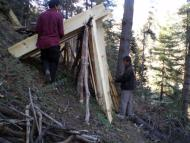 Packing Wooden Planks at local forest